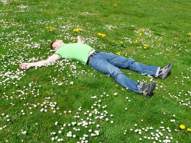 sover på græsset