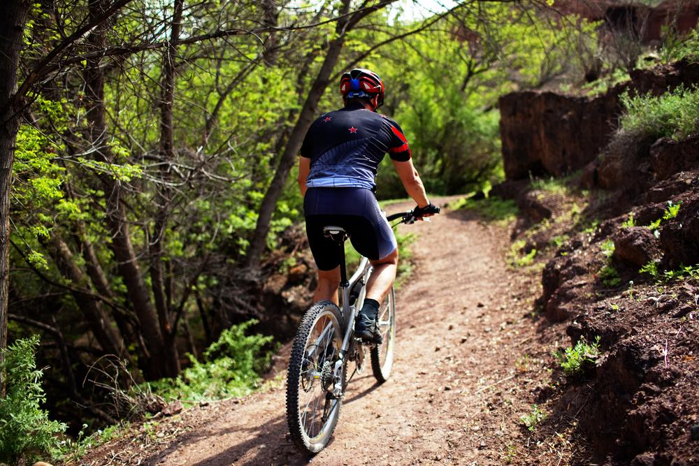 mountainbike - cykling i naturen
